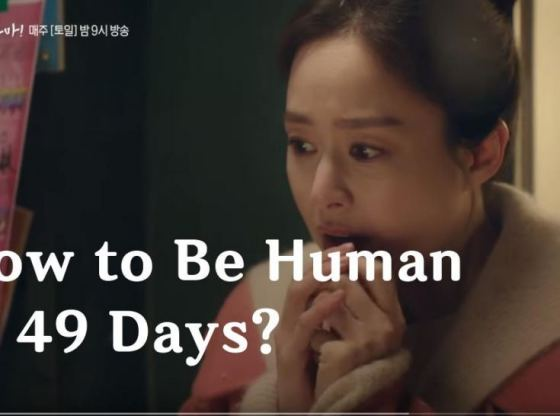 hi bye mama - how to be human in 49 days